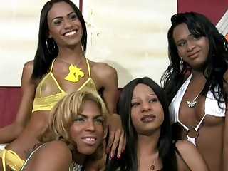 Black shemales in cock sucking and ass fucking foursome